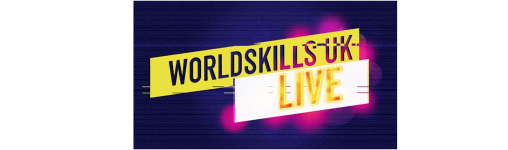 Сессия Learnings from Russia на WolrdSkills LIVE UK